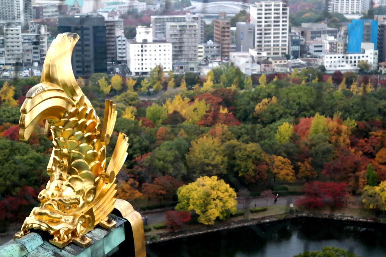 Osaka Castle golden dragon
