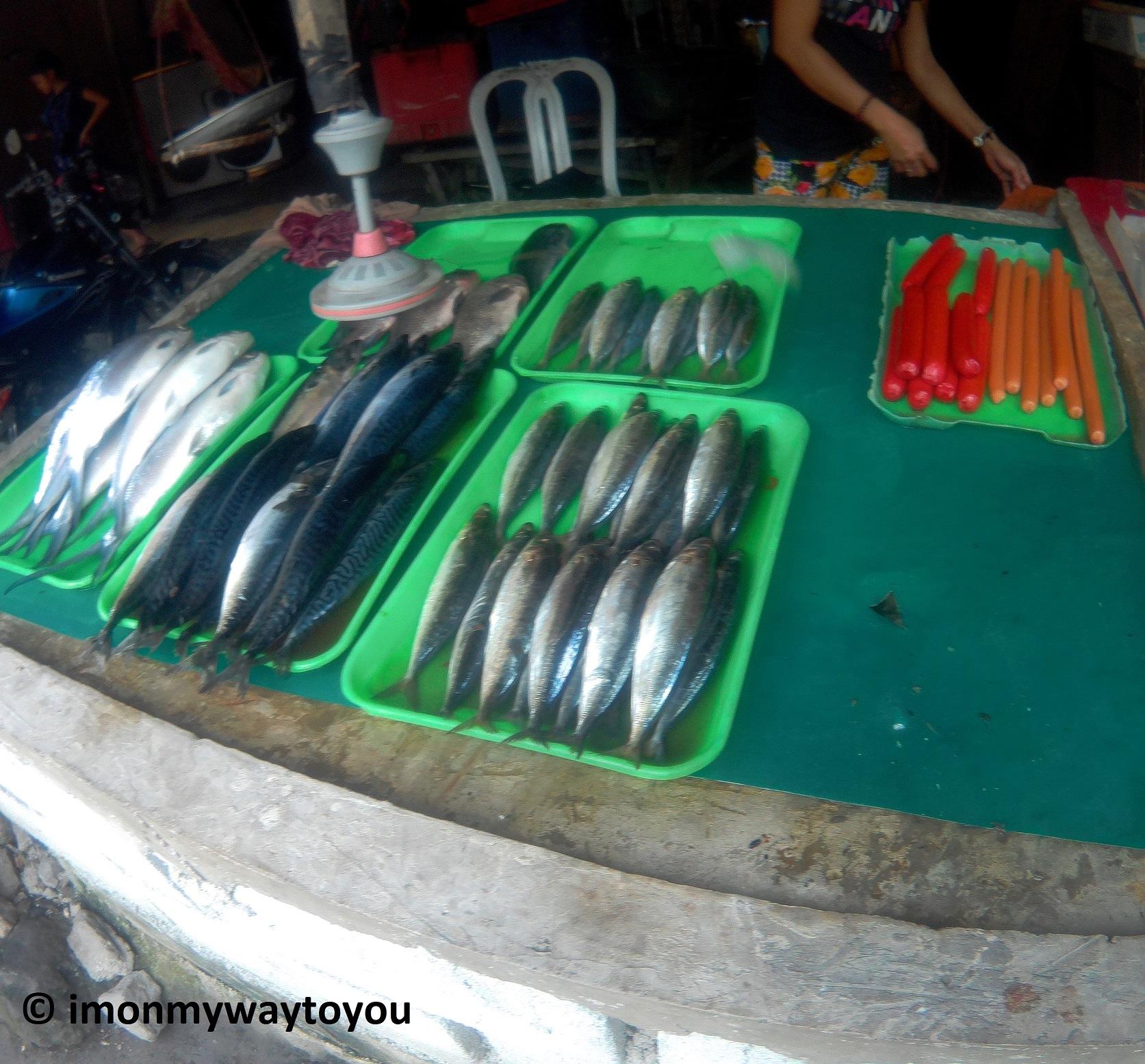 wawa dam fish