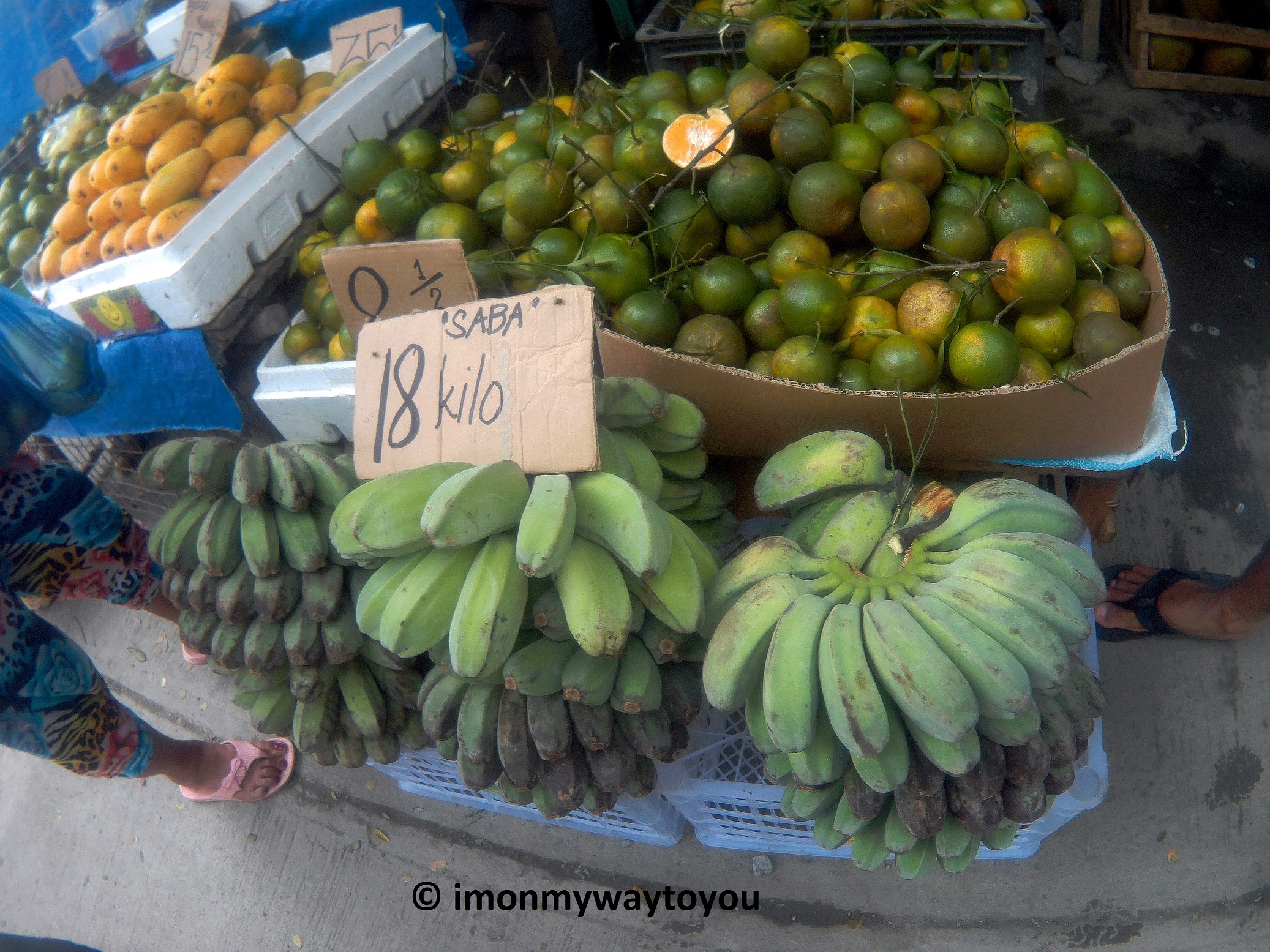 wawa dam fruits