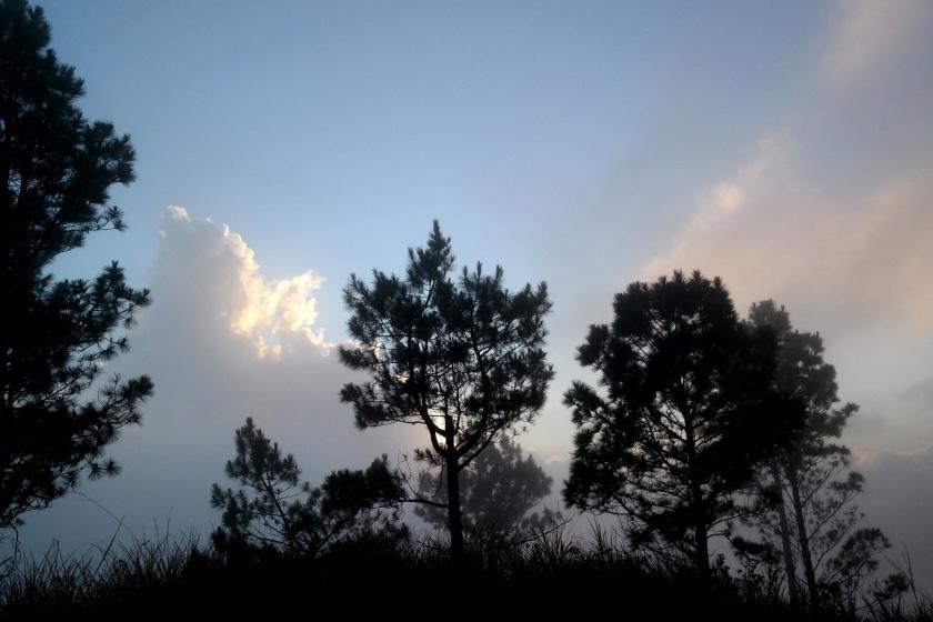 mt. pulag sea of clouds ranger station kabayan benguet
