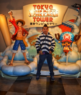 Tokyo Itinerary One Piece Tower