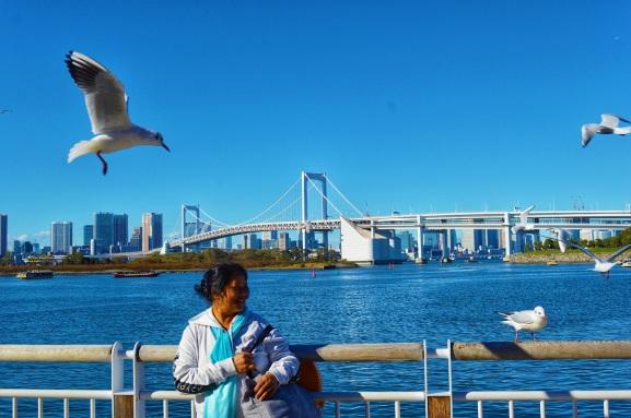 Tokyo Itinerary Odaiba Park
